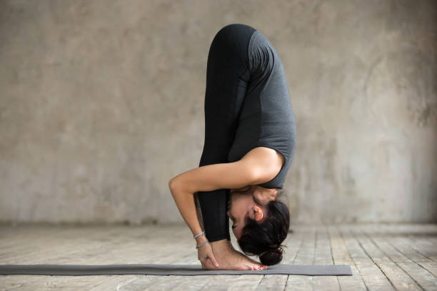 Young woman doing uttanasana exercise Young woman practicing yoga, doing head to knees, uttanasana exercise, Standing forward bend pose, working out, wearing sportswear, black pants and top, indoor full length, gray wall in yoga studio namaskard geothermal area stock pictures, royalty-free photos & images