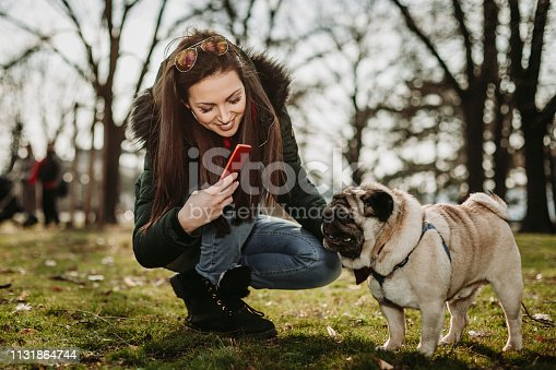 istock Young woman embracing pet dog in park 1131864744