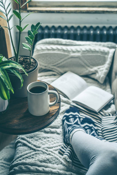 Young woman enjoying coffee and relaxing on a sofa with a book stock photo