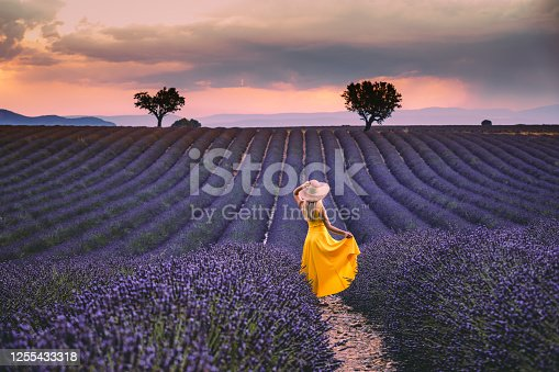 Rearview of Joyful and happy young beautiful woman with yellow dress, hat having fun in the endless lavender field at a sunrise time with dramatic colourful cloudy sky in Valensole, Provence, France