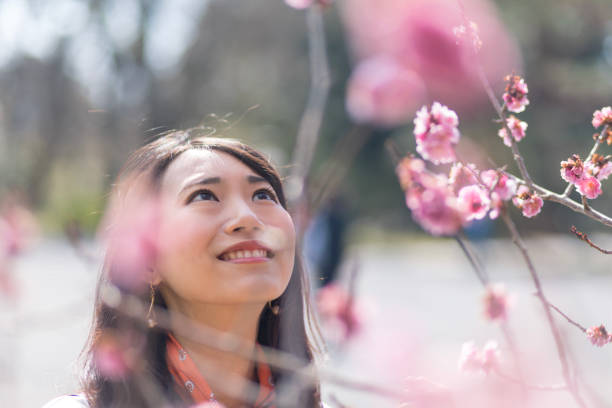 Young woman enjoying spring with plum blossoms stock photo