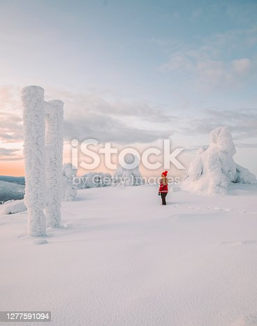 Young traveler woman wearing winter clothes blowing on powder snow in her hands covered by warm gloves enjoying beautiful pink color sunset view while standing in a breathtaking deepsnow big pine trees covered forests and mountain ranges snowy winter landscape in Levi, Lapland, Finland