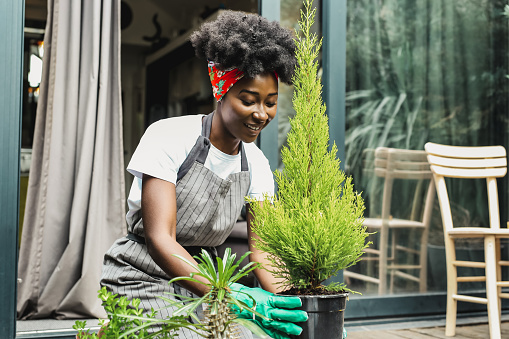 Woman taking care of plants at her home, she kneels on the floor and maintains the plant using garden tools