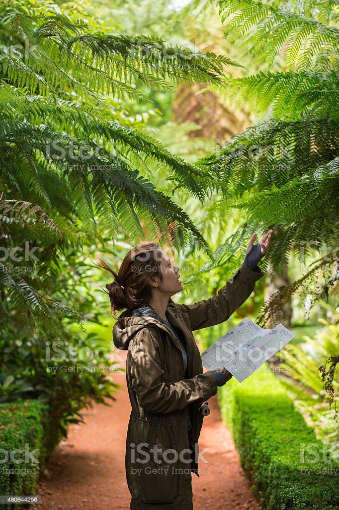Jeune femme examiner fougère argentée - Photo