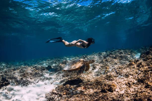 Junge Frau Freediver gleitet unter Wasser mit Meeresschildkröte. – Foto