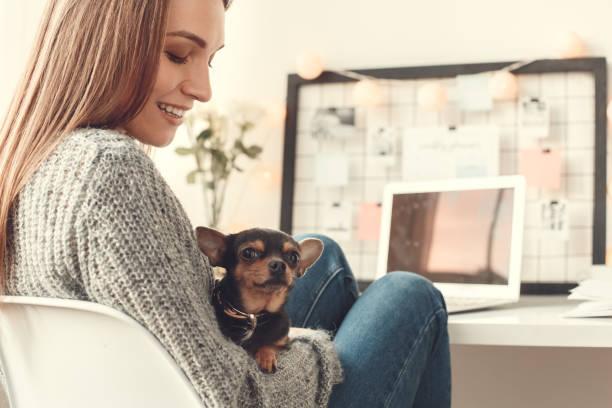 Young woman freelancer indoors home office concept winter atmosphere picture id1171217988?b=1&k=6&m=1171217988&s=612x612&w=0&h=ium7xsw4yy3u9ayu2gsgm4kq imxyr7pz3oistbjnbw=