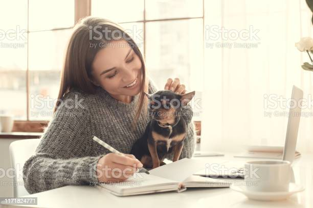 Young woman freelancer indoors home office concept winter atmosphere picture id1171824771?b=1&k=6&m=1171824771&s=612x612&h=3ylyz1indhz7zjq 7xcx1incsjibscfr2smlnxhy 4e=