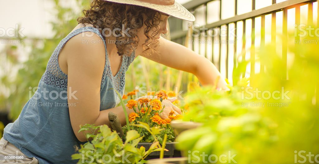 Young woman gardening stock photo