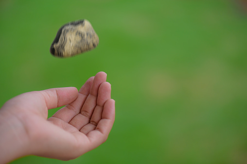 Young woman hand throwing stone on grass green background. Thinking and considering concept.