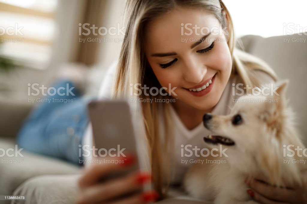 Hund frau und Die Frau