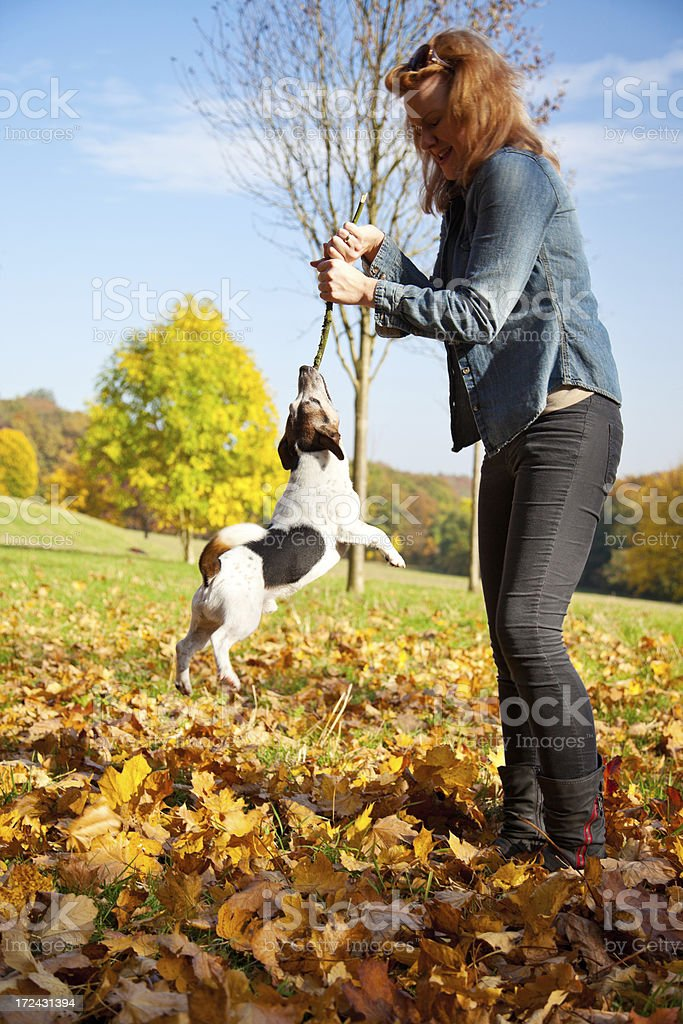 Young woman having fun with dog in autumn royalty-free stock photo