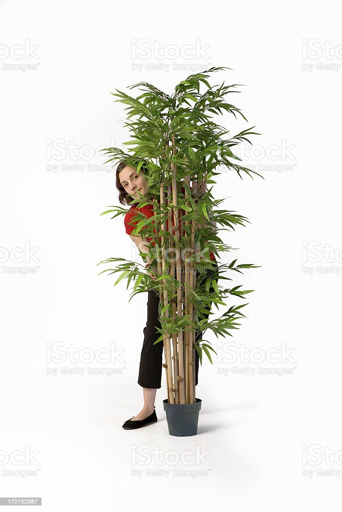 Young Woman Hiding Behind a Houseplant royalty-free stock photo