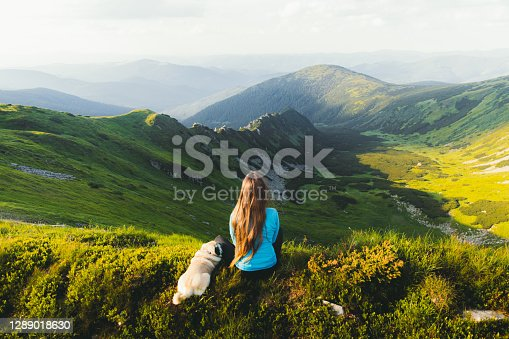 istock Young woman hiker enjoying the mountain view with her dog from the top 1289018630