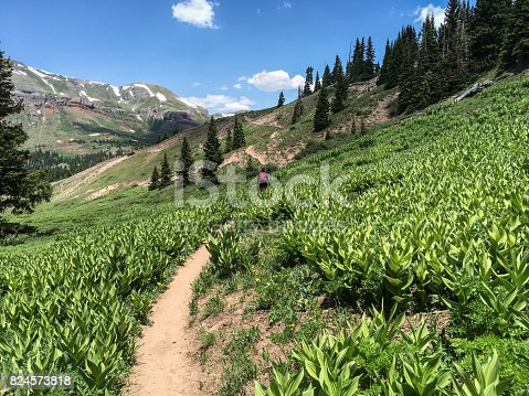 The San Juans in southern Colorado are a high altitude range of mountains that straddle the Continental Divide. This wide-open landscape, at 12,300, is well above timberline. The young woman was photographed while hiking on the Colorado Trail near Molas Pass, Colorado, USA.