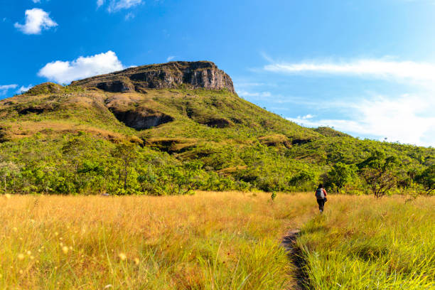 Young woman hiking at Chapada dos Veadeiros Young woman hiking at Chapada dos Veadeiros goias stock pictures, royalty-free photos & images