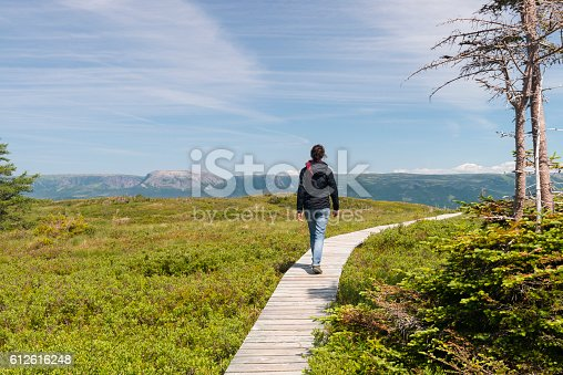 458694311 istock photo Young woman hiking in Newfoundland, Gros Morne National Park 612616248