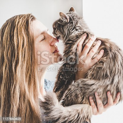 Young woman holding a cute, adorable kitten in her hands. Close-up, isolated background. Concept of pet care