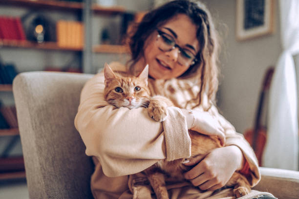 Young woman holding cat stock photo