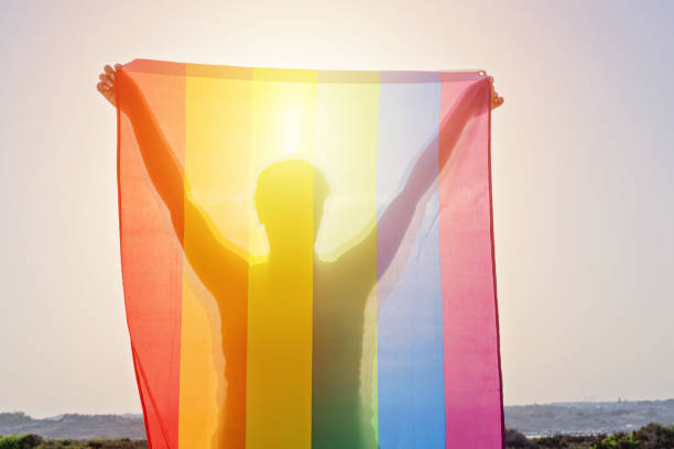 Young woman holding raised hands waving LGBT rainbow flag Young woman holding raised hands waving LGBT rainbow flag against sky. Happiness, freedom and love concept for same sex couples lgbtqi pride event stock pictures, royalty-free photos & images