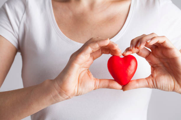 Young woman holding red heart, health insurance, donation, love concept Female hands holding red heart, Love concept for valentines day with sweet and romantic moment month stock pictures, royalty-free photos & images