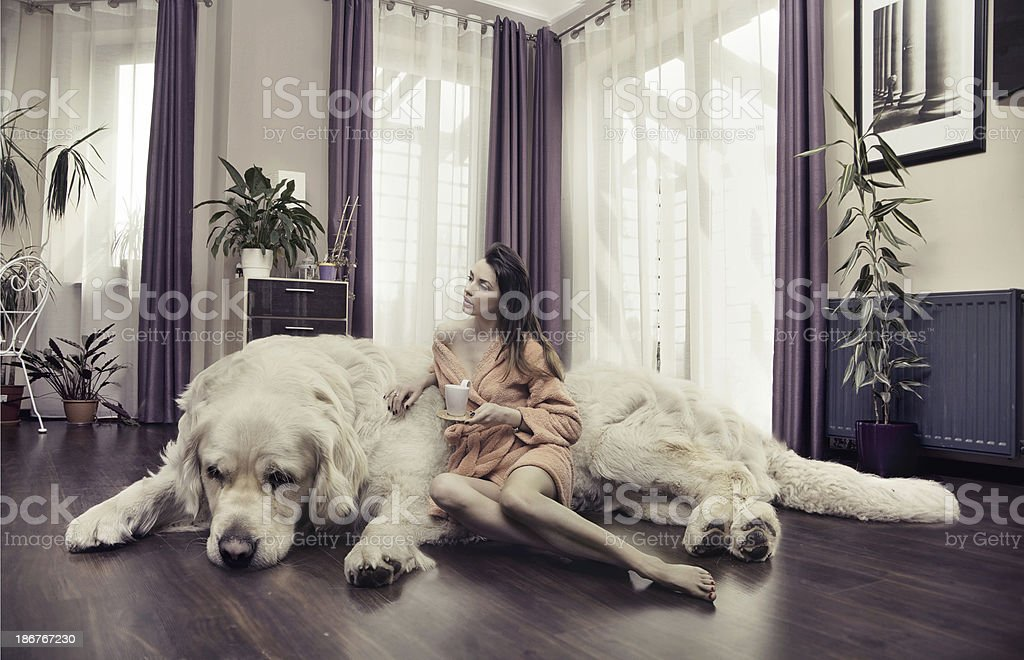 Young woman hugging big dog stock photo
