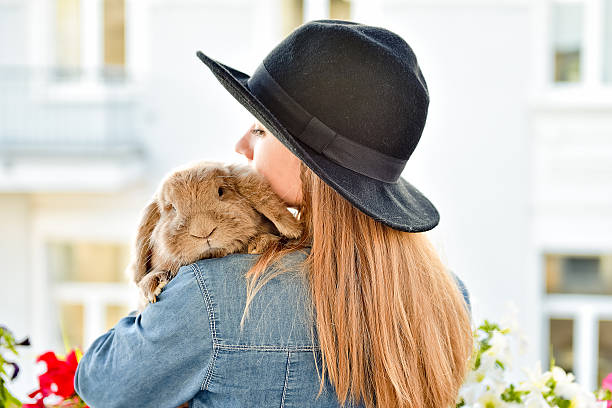 Young woman hugs big cute rabbit stock photo