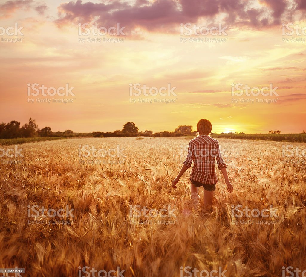 Young woman in a field at sunset stock photo