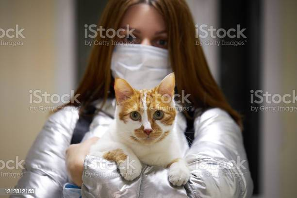 Young woman in a protective mask holds a masked cat in her arms in picture id1212812153?b=1&k=6&m=1212812153&s=612x612&h=xq3zbdtncjizkvrwkz7cj95dodt8rktiev0ewwnhyoc=
