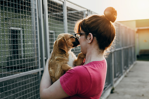Young woman in animal shelter