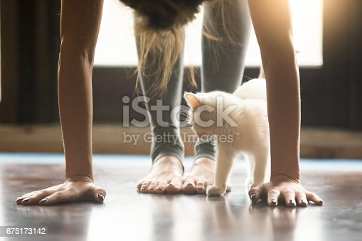 istock Young woman in Ardha uttanasana pose, home interior, close up 675173142