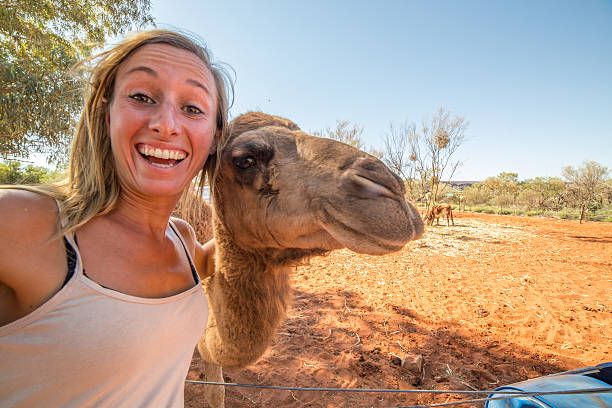 young woman in australia takes selfie portrait with camel - camello fotografías e imágenes de stock