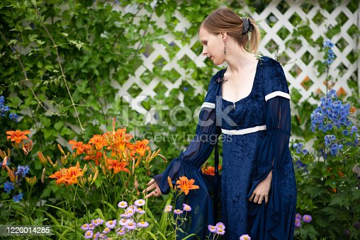 Horizontal outdoor summer garden shot of young woman in blue velvet fantasy renaissance dress, three quarter length, looking at orange day lilies.