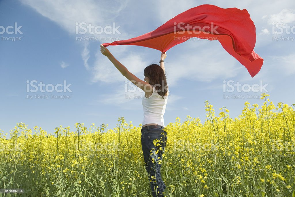Young woman in canola field holding red scarf to wind royalty-free stock photo