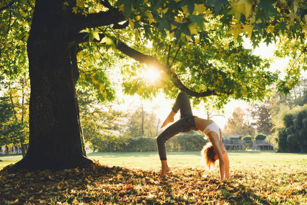 Young woman in casual wear doing yoga pose in park. Girl is practicing yoga outdoors. stock photo