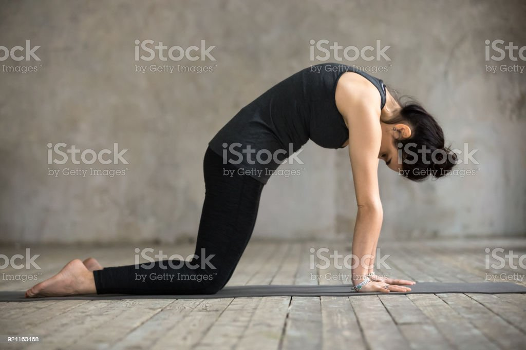Young woman in Cat pose stock photo