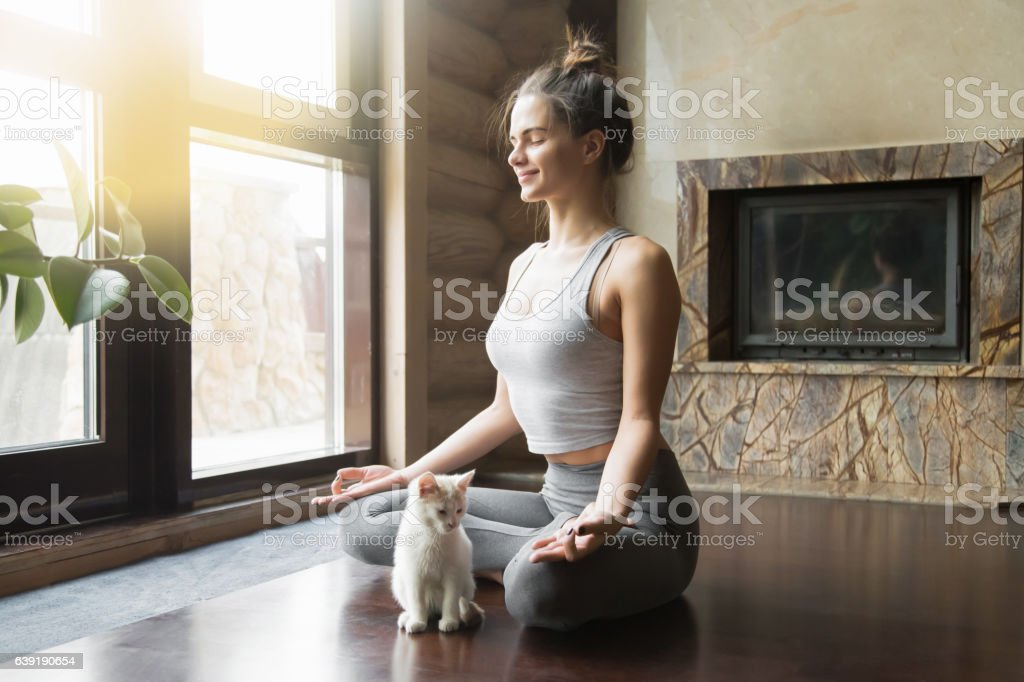 Young woman in Half Lotus pose at home with cat stock photo