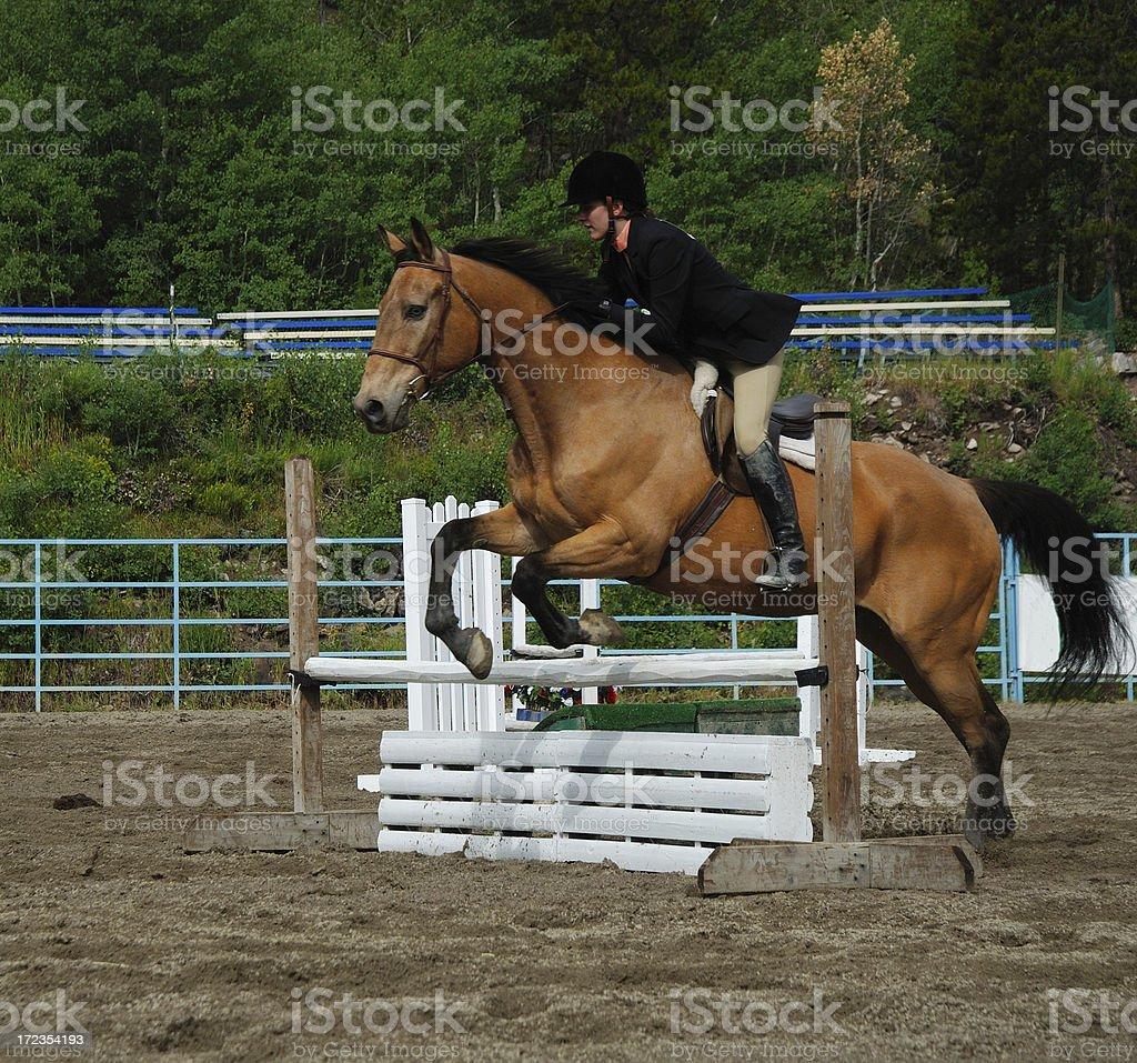 Mujer joven en el concurso hípico de saltos foto de stock libre de derechos