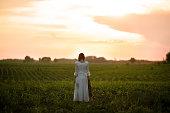 夕暮れ時のトウモロコシ畑に長い白いレースのドレスの若い女性。背面図。