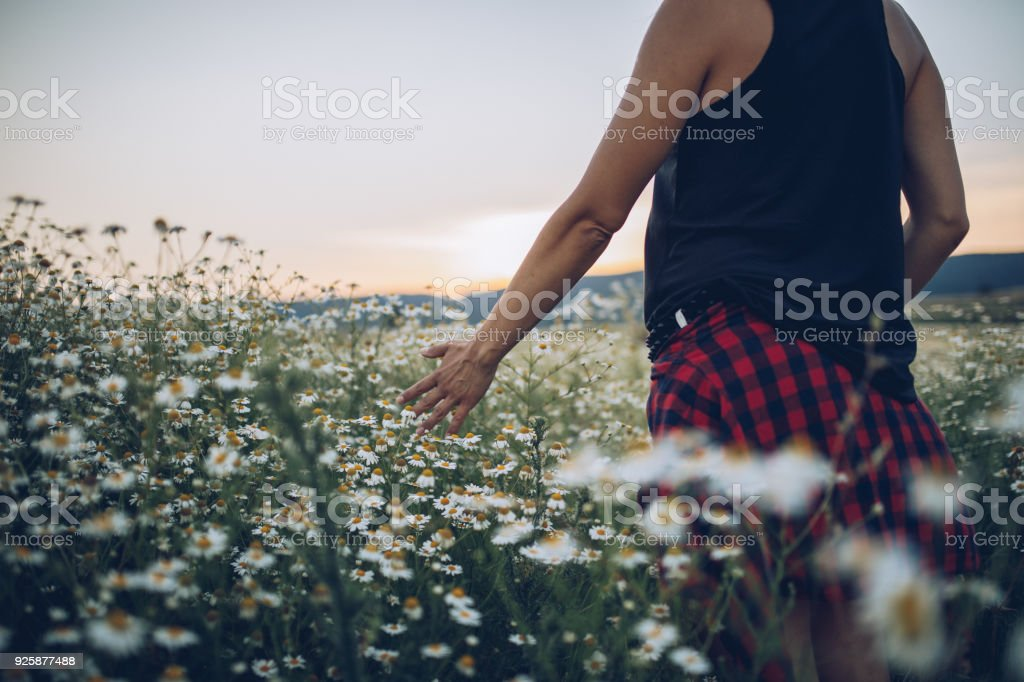 Young woman in nature stock photo