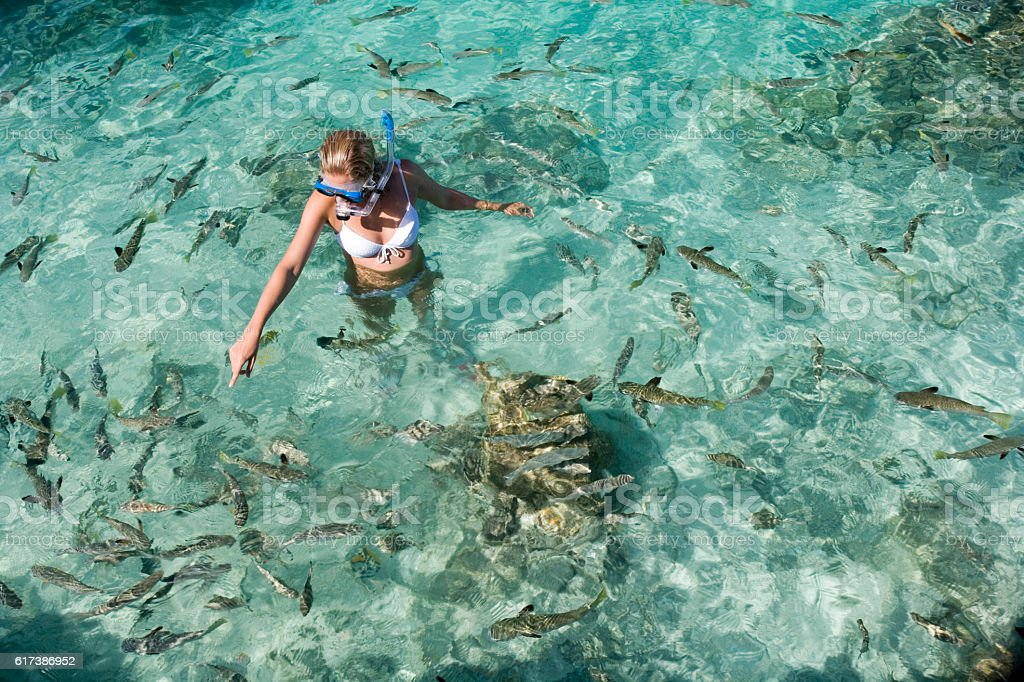 Young woman in snorkel gear in tropical lagoon. South Pacific stock photo