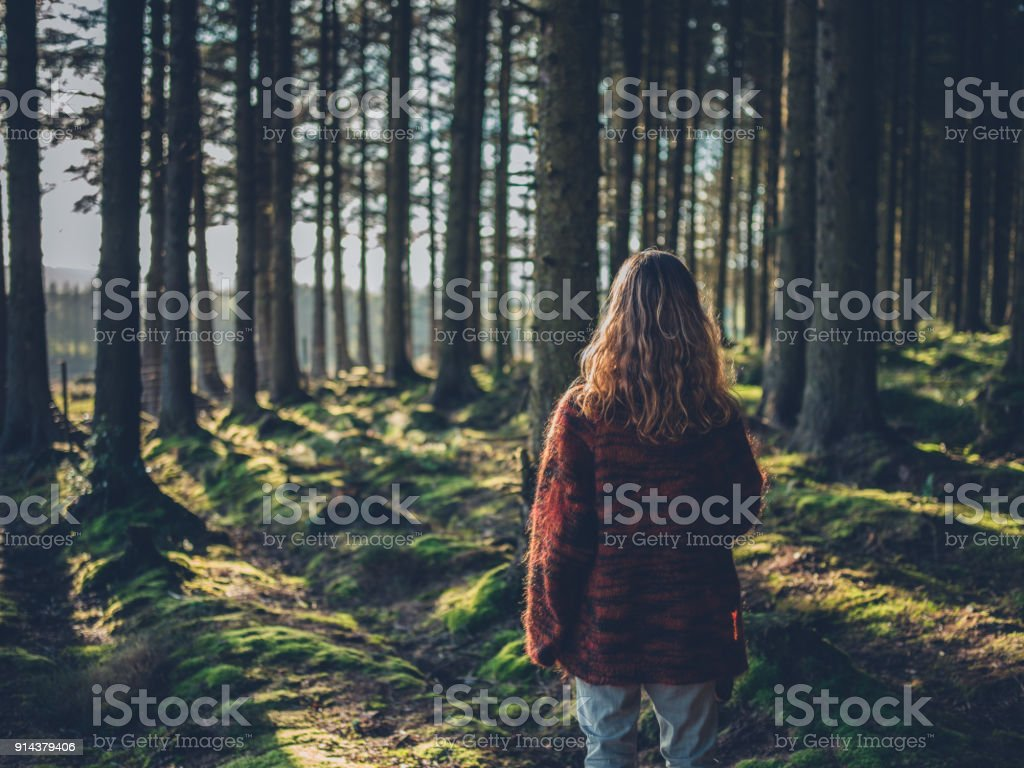 Young woman in the forest at sunset stock photo