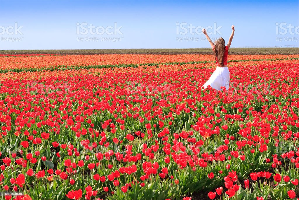 young woman in tulips royalty-free stock photo