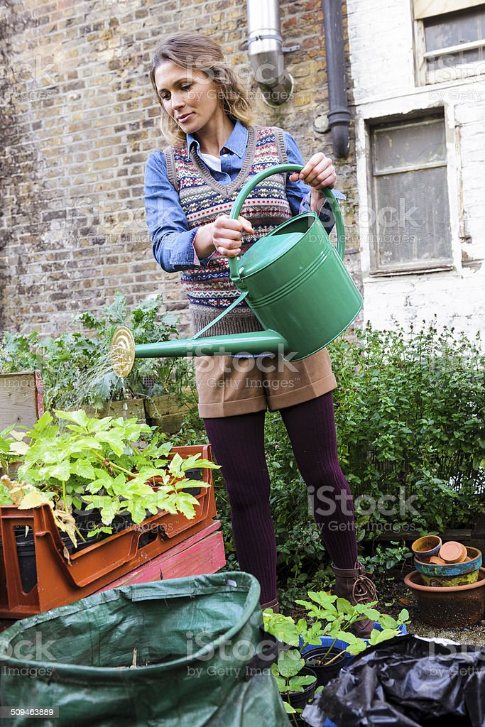 Young Woman In Urban City Garden Watering Plants, London, UK stock photo