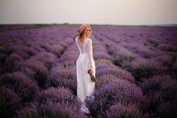Young woman in white dress walks through blooming lavender field at sunset stock photo