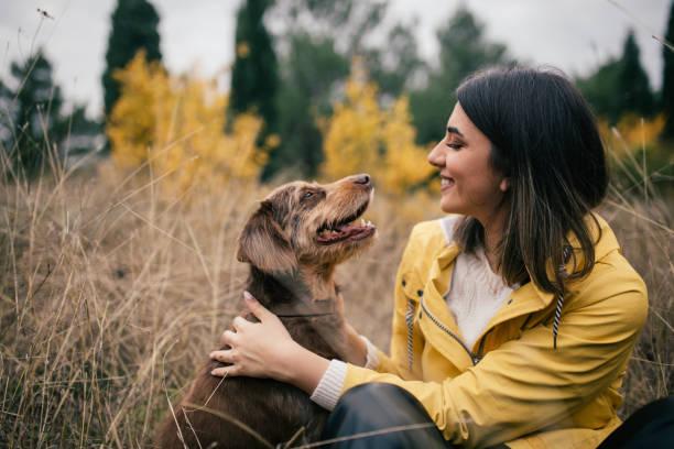 joven mujer con impermeable amarillo disfrutando del tiempo con su perro viejo en el bosque - foto de stock