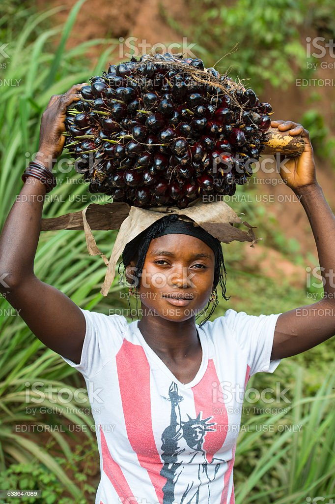 Young woman is carrying a bunch of palm fruits stock photo