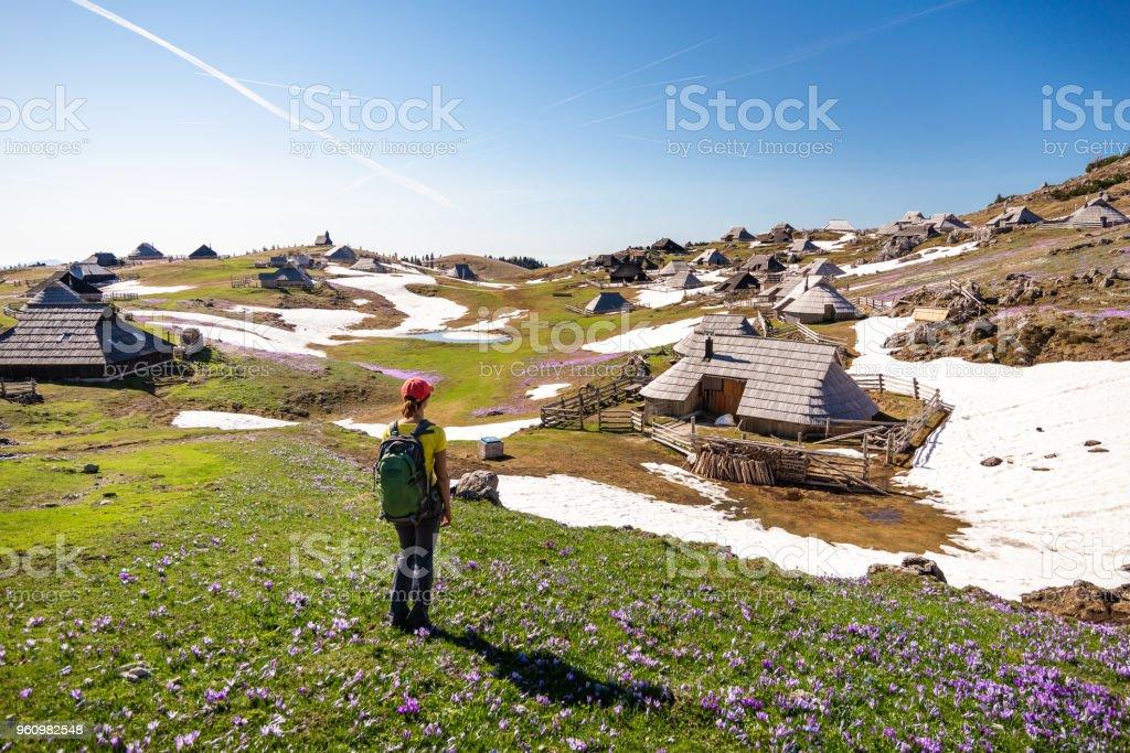 Junge Frau genießt den Blick auf Hütten oder Häusern auf idyllischen Hügel Velika Planina / große Weide Plateau im Frühjahr mit Krokusse in Velika Planina, Slowenien. - Lizenzfrei Abenteuer Stock-Foto
