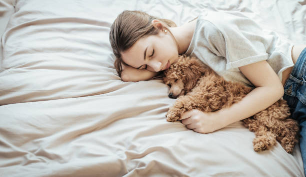 Young woman is lying and sleeping with poodle dog in bed picture id672768140?b=1&k=6&m=672768140&s=612x612&w=0&h=au8u rkua2k1nafb5zcajvfeorff0sxastrvvmgshbi=