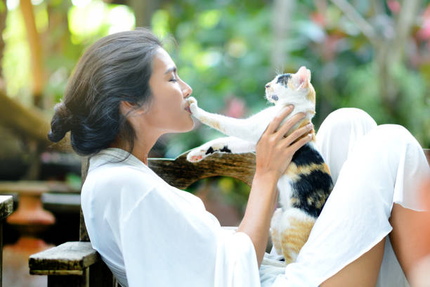 Young woman is resting with a cat stock photo