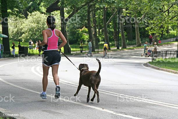 Young woman jogging with dog picture id172348393?b=1&k=6&m=172348393&s=612x612&h=ia gu3na9txzfmeapcy23g2tncfgcp hi85qsef1kh0=